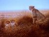 7 Gepard mit Jungen__ Größe: 40x50cm__Preis: 150€ (o.R.)