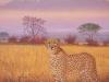 5 Gepard vor dem Kilimanjaro__Größe: 40x50cm__Preis: 300€ (m.R.)