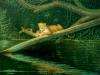 12 Jaguar am Wasser__Größe: 60x50cm__Preis: 130€ (o.R.)