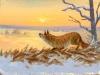 Fuchs in der Morgensonne