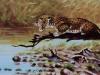 Leopard am Wasser