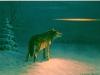 Wolf im Lichtstreifen