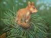 21 Eichhörnchen__Größe: 30x30cm__Preis: 100€ (m.R.)