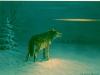 78 Wolf im Lichstreifen__Größe: 29x23cm__Preis: 150€ (m.R.)